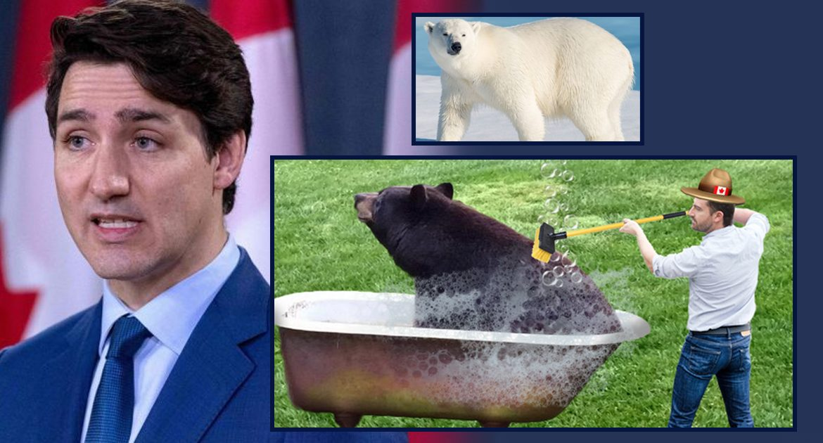Justin Trudeau Demands All Bears Be Scrubbed To Be Sure They Aren't Polar Bears In Blackface