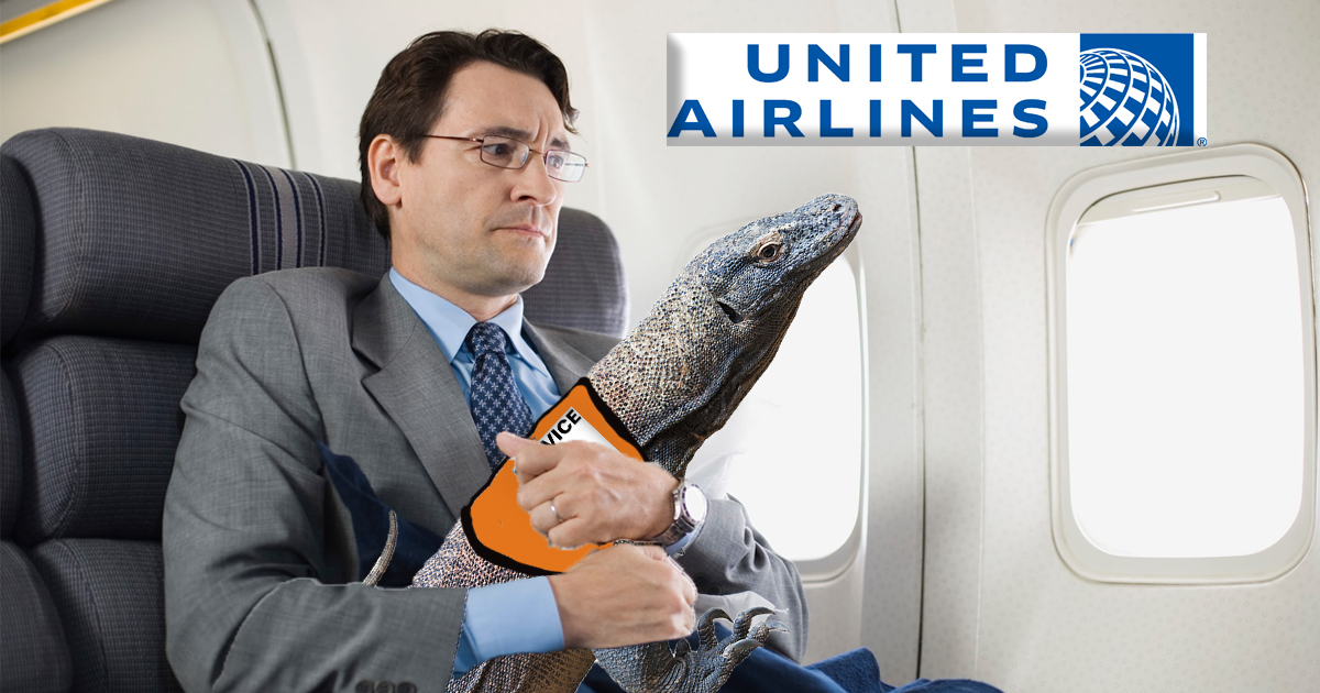 United Airlines Will Now Allow Emotional Support Komodo Dragons On Board