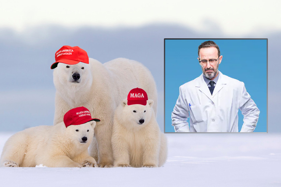 Climatologists To Polar Bears In MAGA Hats, 'You're Not Helping!'