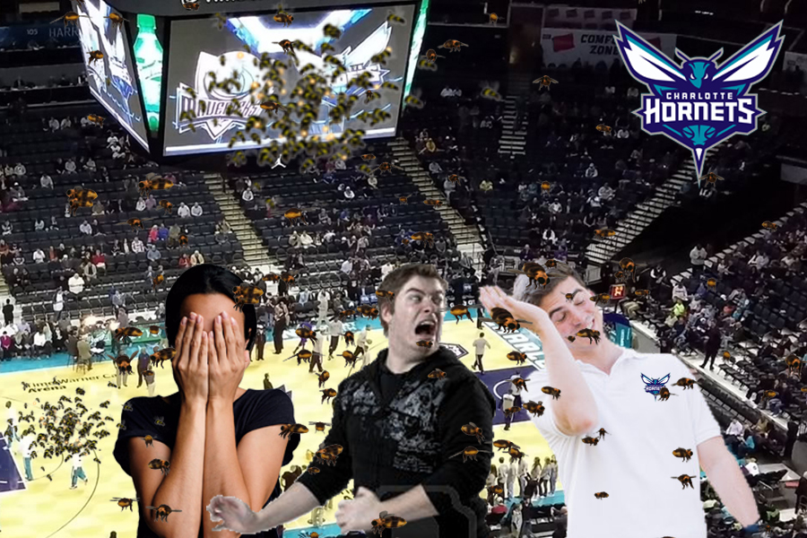 NBA's Charlotte Hornets Release Thousands Of Hornets During Player Introductions
