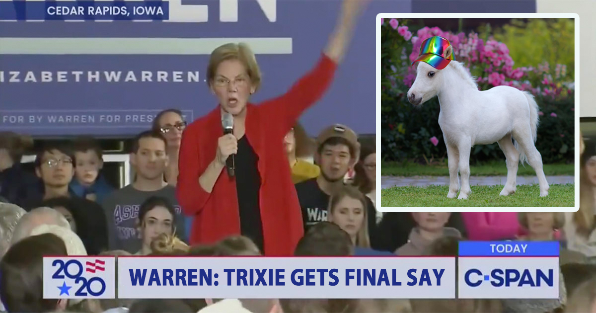 Warren Vows to Give Bisexual Miniature Horse Veto Power Over Secretary of Labor Pick