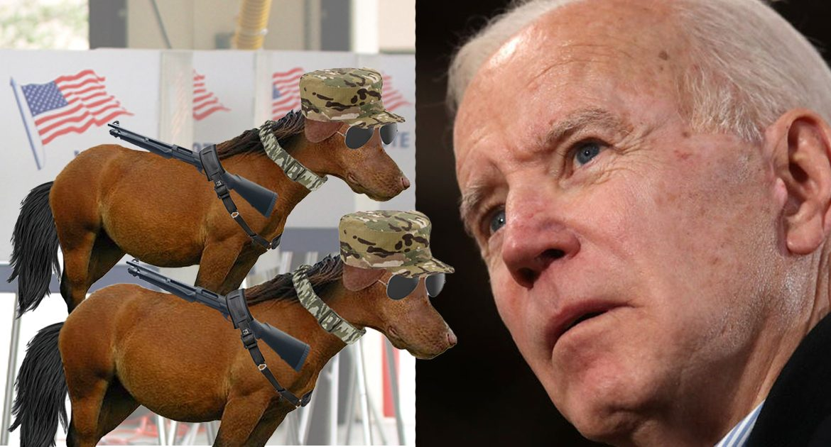 Report: High Voter Turnout of Dog-Faced Pony Soldiers Could Spell Trouble For Biden Campaign