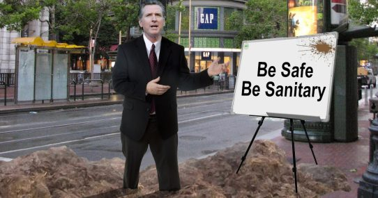 Gavin Newsom Accidentally Stands In Street Poop While Stressing Need For National Health Standards