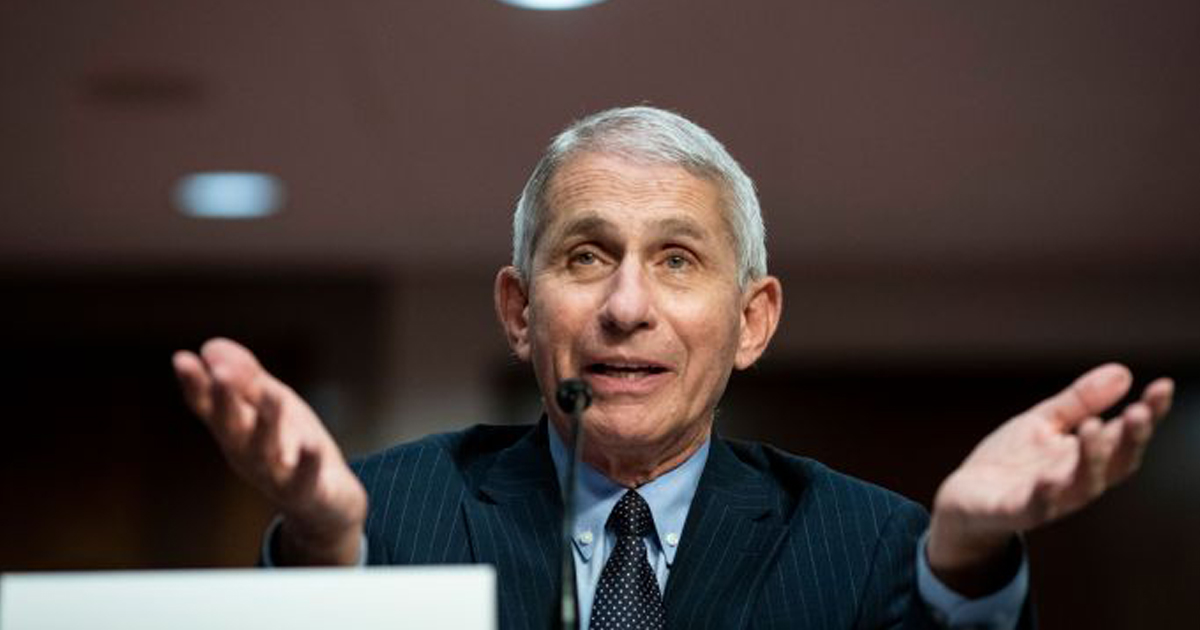 Dr. Fauci Says 'Jury Still Out' On Health Risk Of Protesting On Freeways