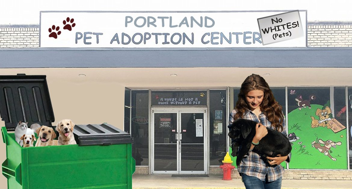 Portland Pet Adoption Centers Demand Citizens Exchange White Pets For More Inclusive Black Pets