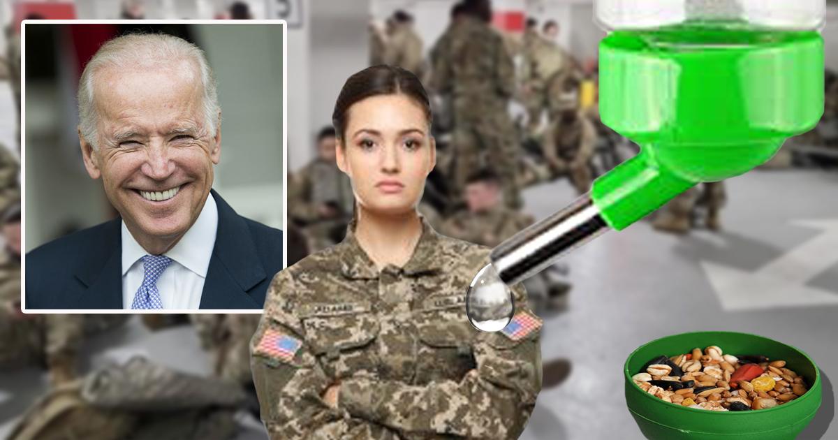 Biden Orders Hamster Feeders Be Installed For National Guard