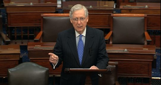 Mitch McConnell: 'Americans No Longer Like Trump, Freedom, Sex'