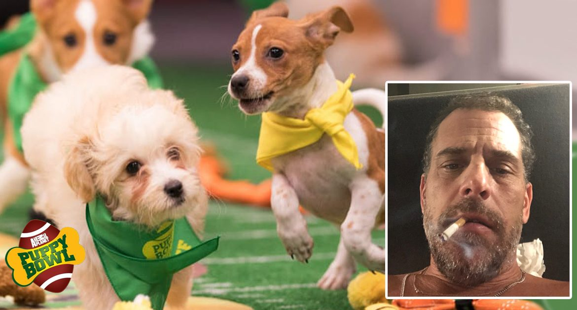 Sex, Drugs, Gambling: Why Hunter Biden Is Forever Banned From Puppy Bowl
